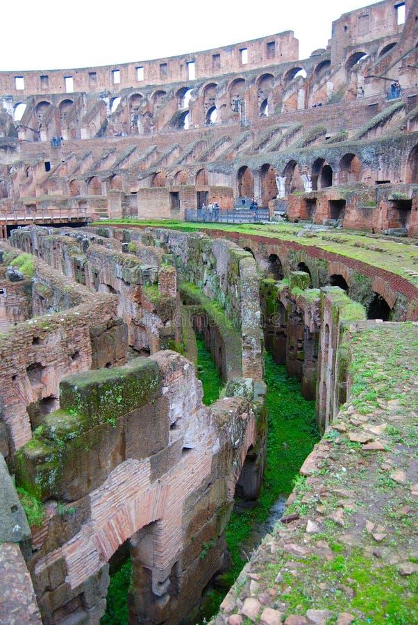 Colosseum verticale fotografie stock