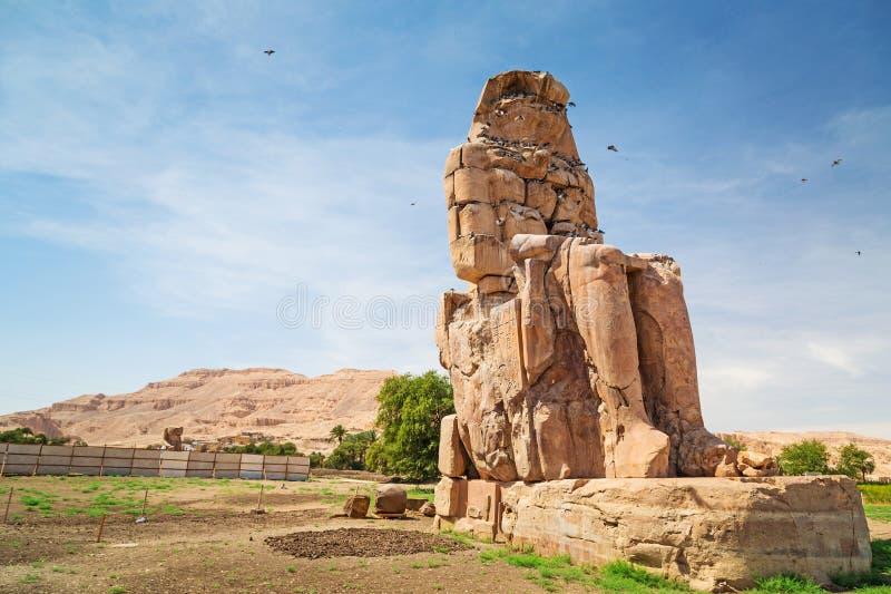 The Colossi Of Memnon In Egypt Stock Photos