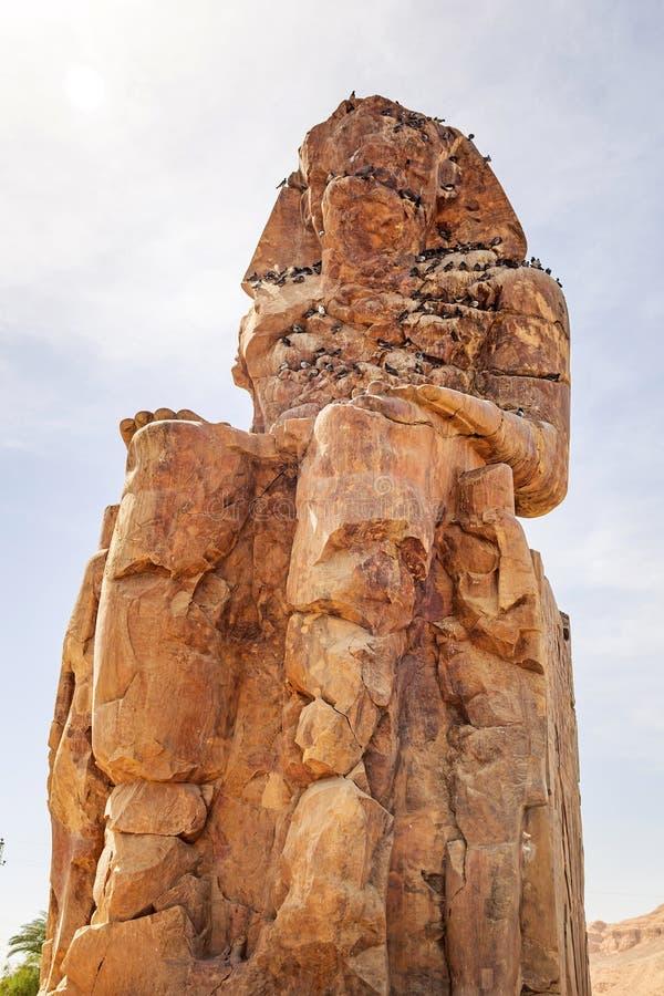 Download The Colossi Of Memnon In Luxor Stock Image - Image of desert, colossi: 33761441