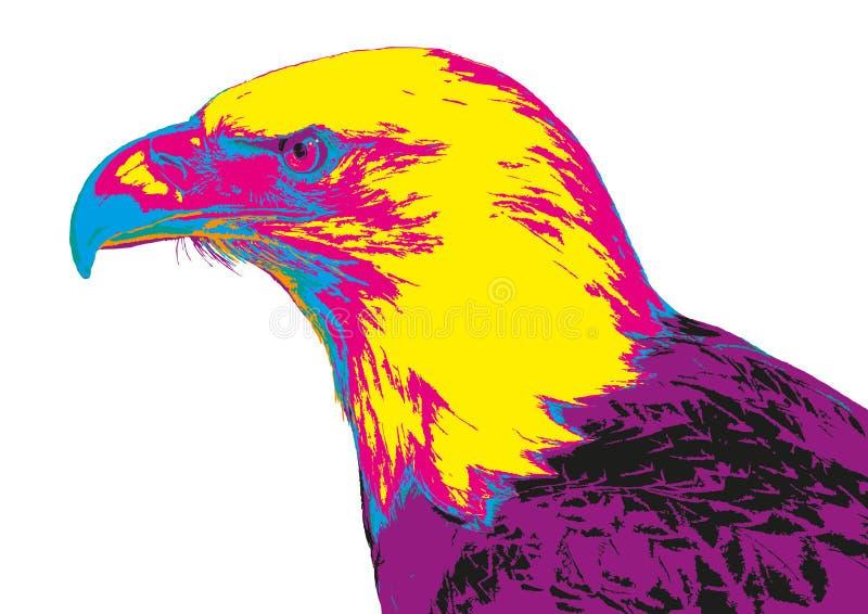 Coloured łysy orzeł ilustracja wektor