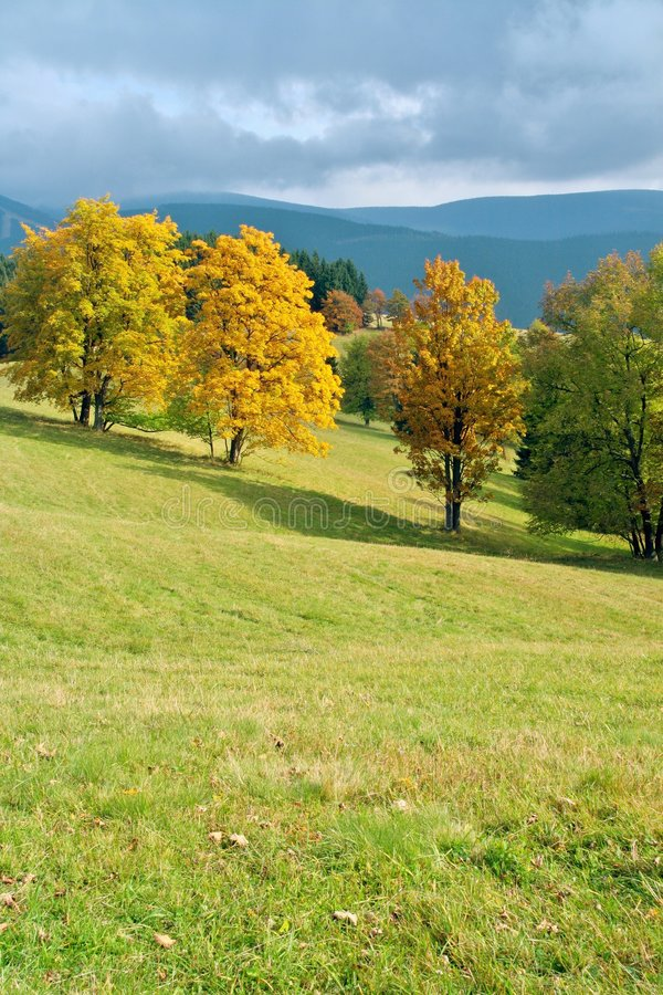 Download Coloured Autumn In Landscape Stock Image - Image of branch, foliage: 6775889