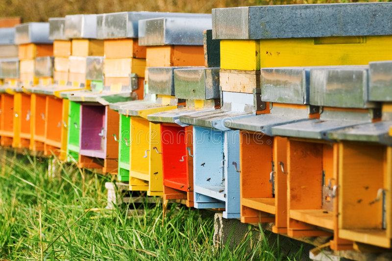 Coloured beehives royalty free stock photos