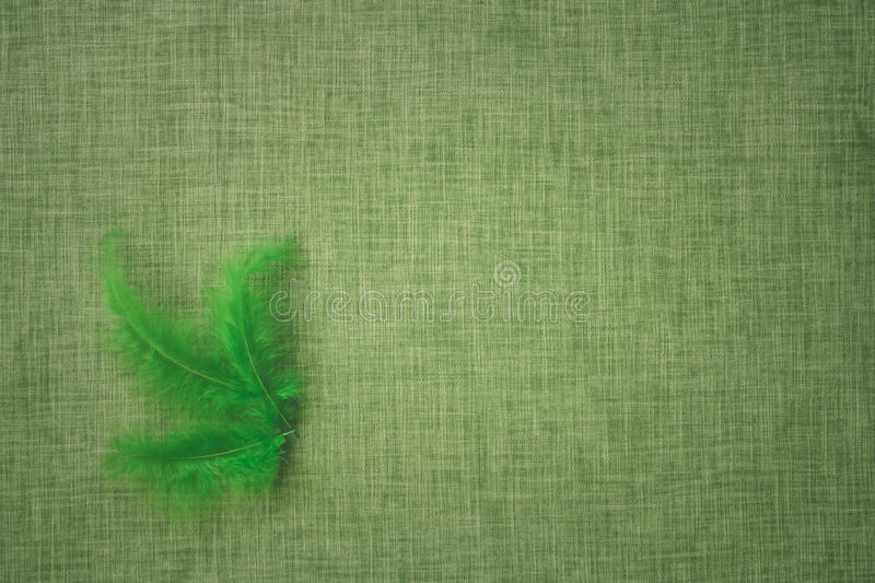 Coloured bird feathers on a fabric background. Intended for craft royalty free stock images