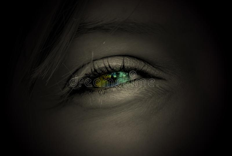 Coloured eye stock images