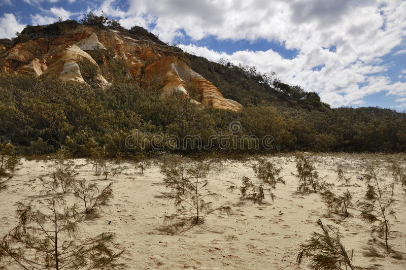 Coloured Sands, Fraser Island. A picture of the coloured sand sanstone formation on Fraser Island, Australia royalty free stock photography