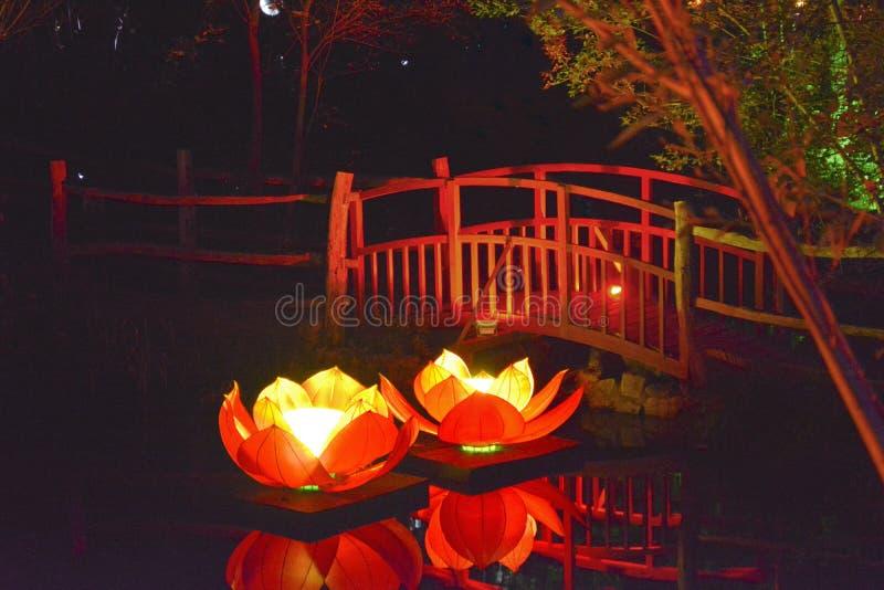 Illuminated Water Lilies and Bridge stock photos