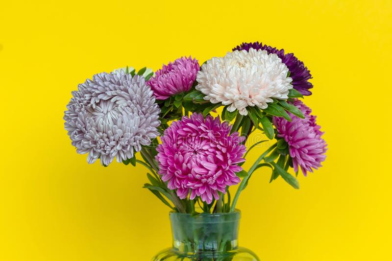 Colourful asters flowers bouquet in glass vase. royalty free stock photo