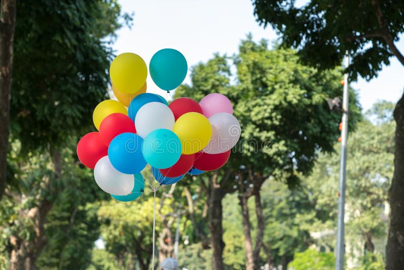 Colourful balloons on park with trees on background.  stock photography