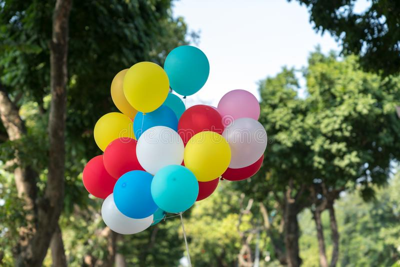 Colourful balloons on park with trees on background.  stock image