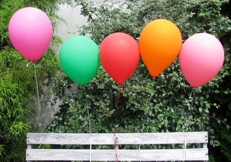Colourful balloons tied to a bench. In the garden royalty free stock photo