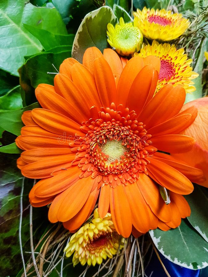 A flower bouquet. A colourful bouquet for the bride stock images