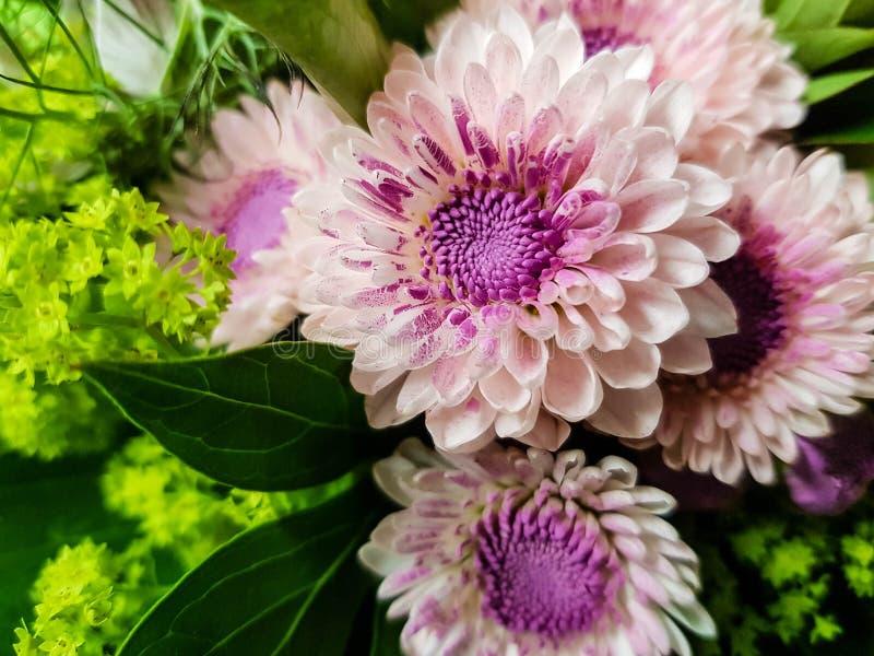 A flower bouquet. A colourful bouquet for the bride stock photo