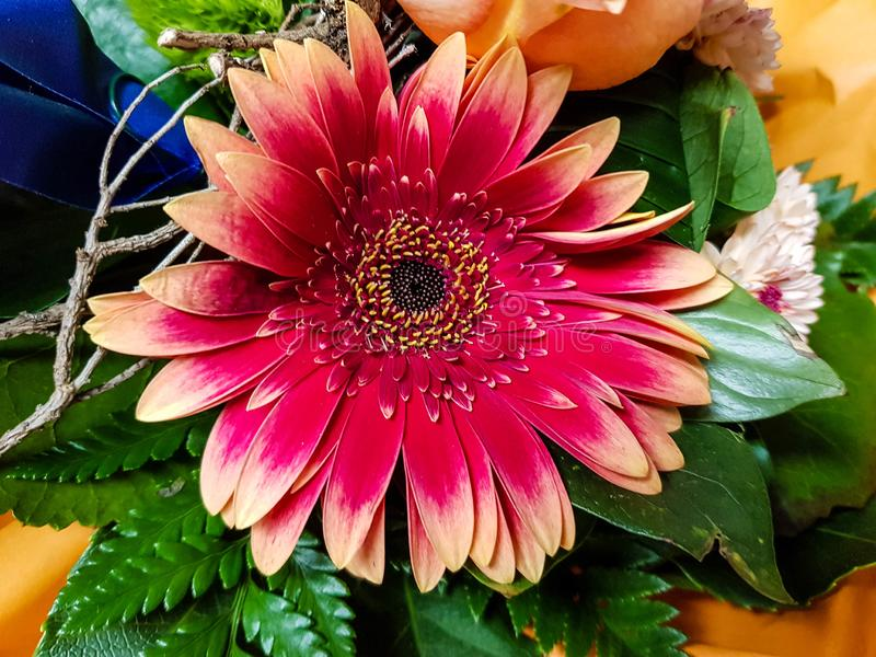A flower bouquet. A colourful bouquet for the bride royalty free stock photo