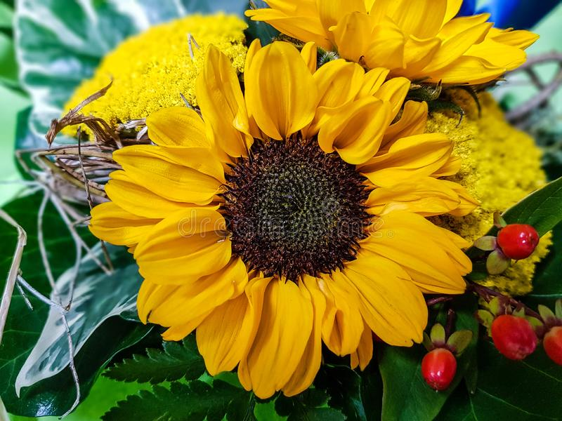 A flower bouquet. A colourful bouquet for the bride stock photography