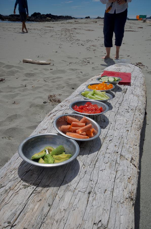 Colourful bowls of vegetables lined up on a log for lunch on a kayak trip to the Brookes Peninsula, Vancouver Island royalty free stock images
