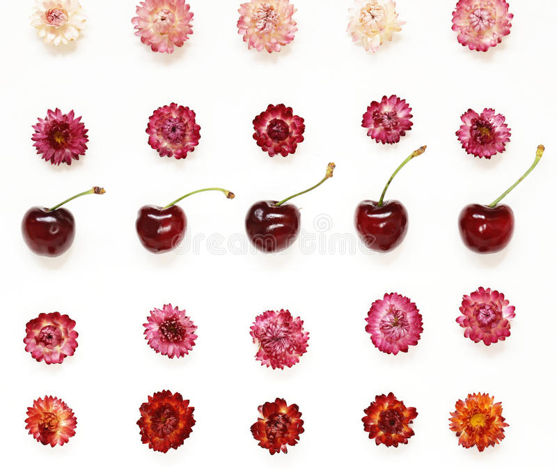 Colourful bright pattern made of flowers and cherries royalty free stock photos