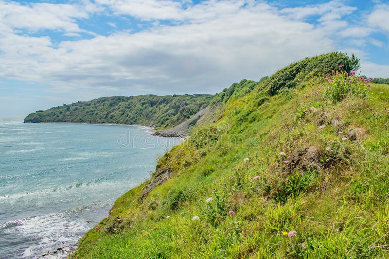 The colourful curving summer coast at Peveril Point,Swanage,England. A view up the hill and around the colourful curving summer coast at Peveril Point,Swanage royalty free stock images