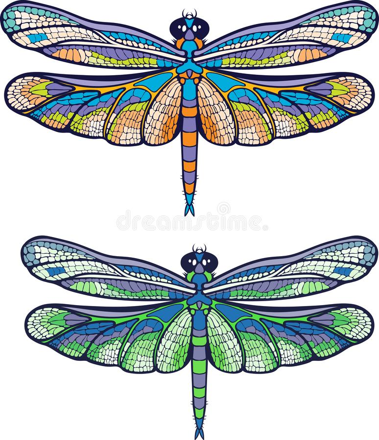 Colourful dragonfly. Two isolated images of a colourful dragonfly stock illustration