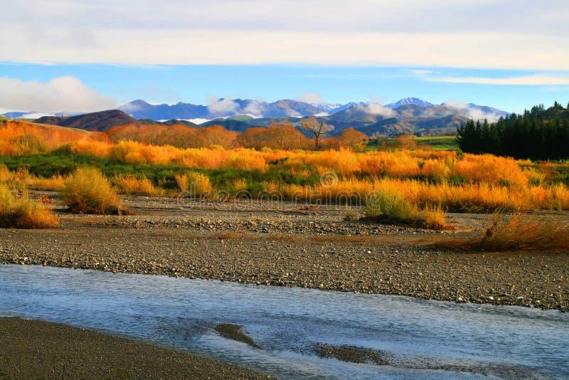 Colourful dziki jesień krajobraz rzeka, natura krzaki i góry na tle, fotografia royalty free