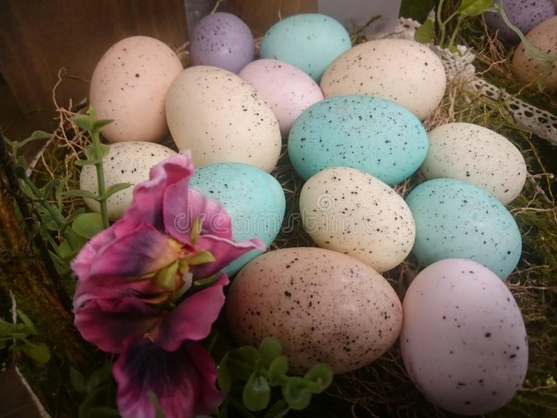 Colourful Easter Eggs composition royalty free stock image