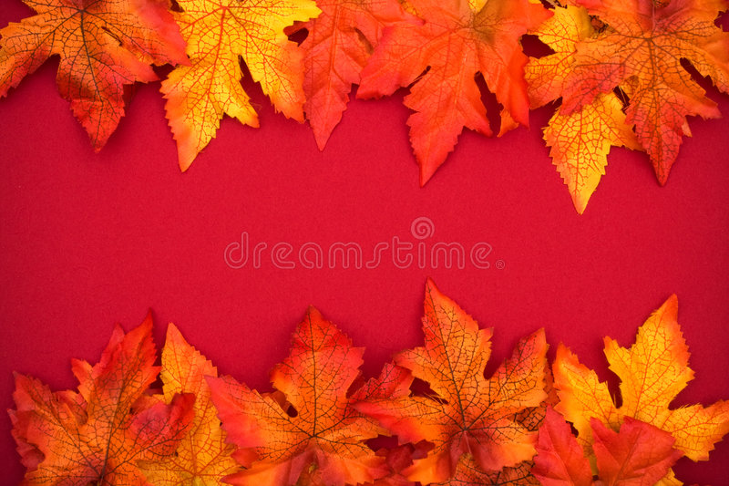 Download Colourful Fall Background Frame Stock Image - Image: 6156577