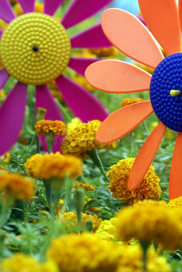 Colourful fan garden stock image