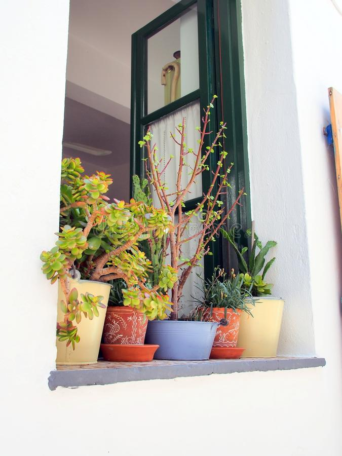 Colourful Flower Pots on Greek Island Window Sill royalty free stock photography