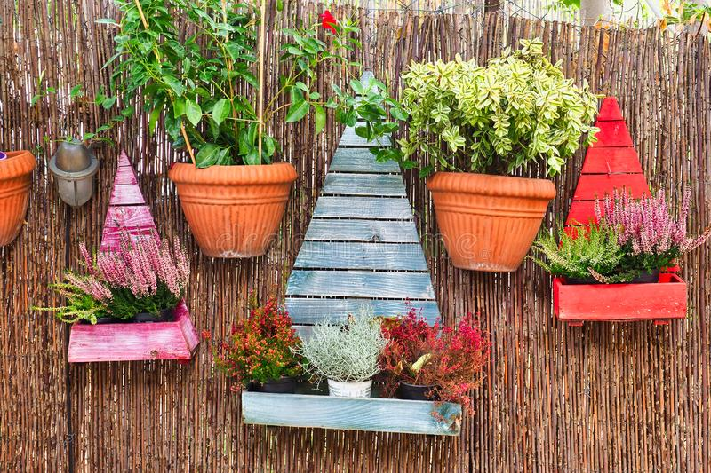 Colourful Flower Pots hanging on Reed Wall, Plaka, Athens, Greece. Colourful flower pots, including stylised wooden pine trees, hanging on a fine reed wall or stock image