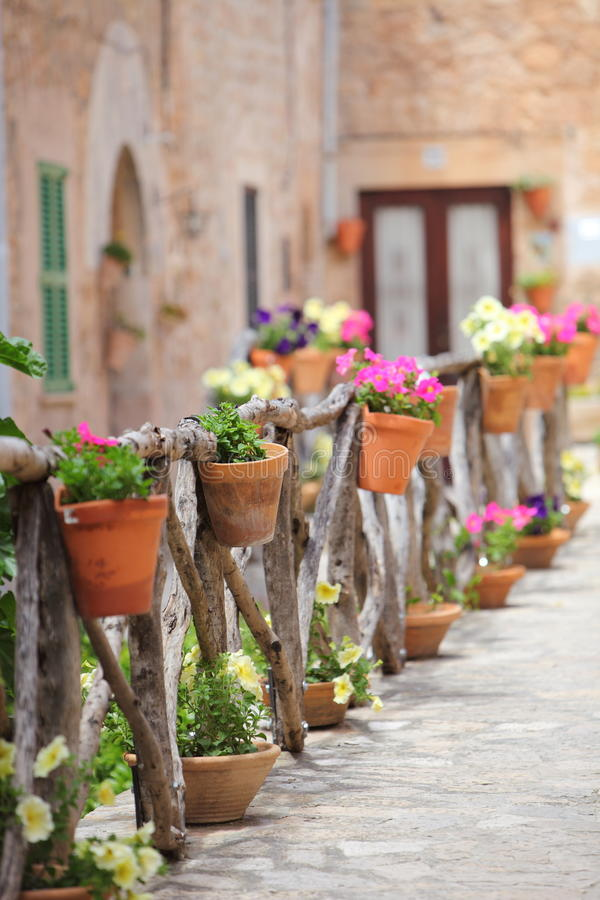 Colourful flowers on a rustic wooden fence outside stock images