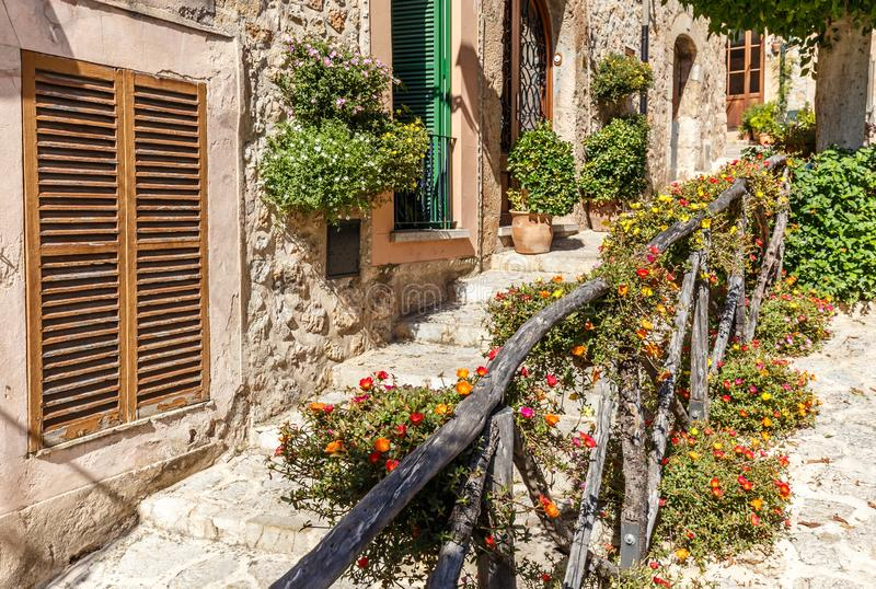 Colourful flowers in the streets of Valldemossa. Colouful flowers and pot plants in the narrow streets of Valldemossa. Mallorca