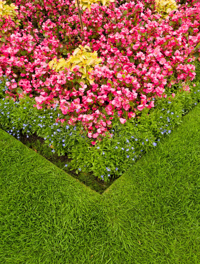 Colourful Garden Flower Bed. Close up of a colorful garden flower bed with grass border stock photos