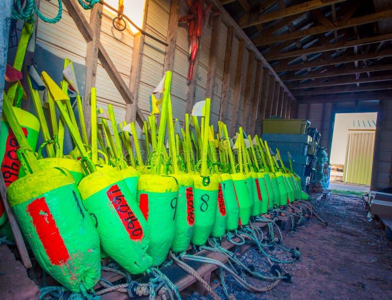 Colourful homara połów pociesza zdjęcie stock
