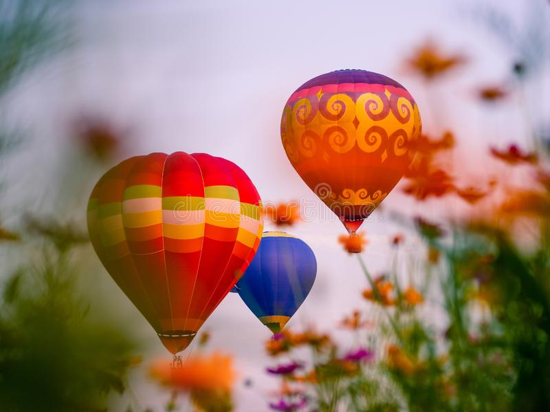 Colourful hot air balloons flying at  Singh Park in Chiang Rai. Thailand stock photography