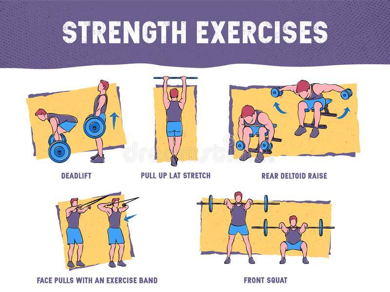 Colourful illustration demonstrates the proper exercise technique royalty free illustration