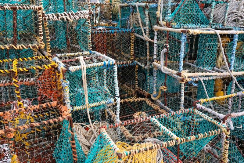 Colourful kraba i homara klatki obrazy stock