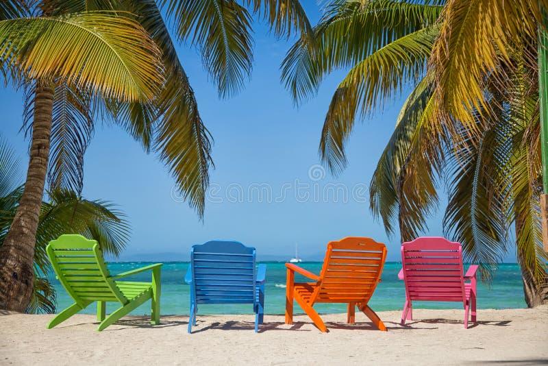 Colourful krzesła z morzem karaibskim w tropikalnej wyspie z plażą i drzewkami palmowymi zdjęcie stock