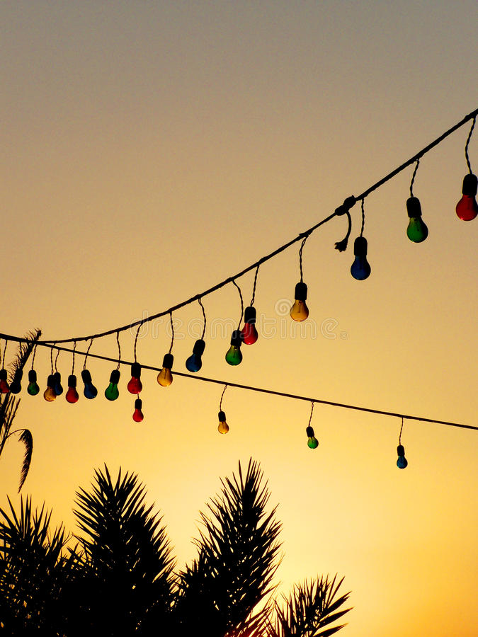 Free Colourful Light Bulbs And Palm Trees At Sunset Stock Image - 57737921
