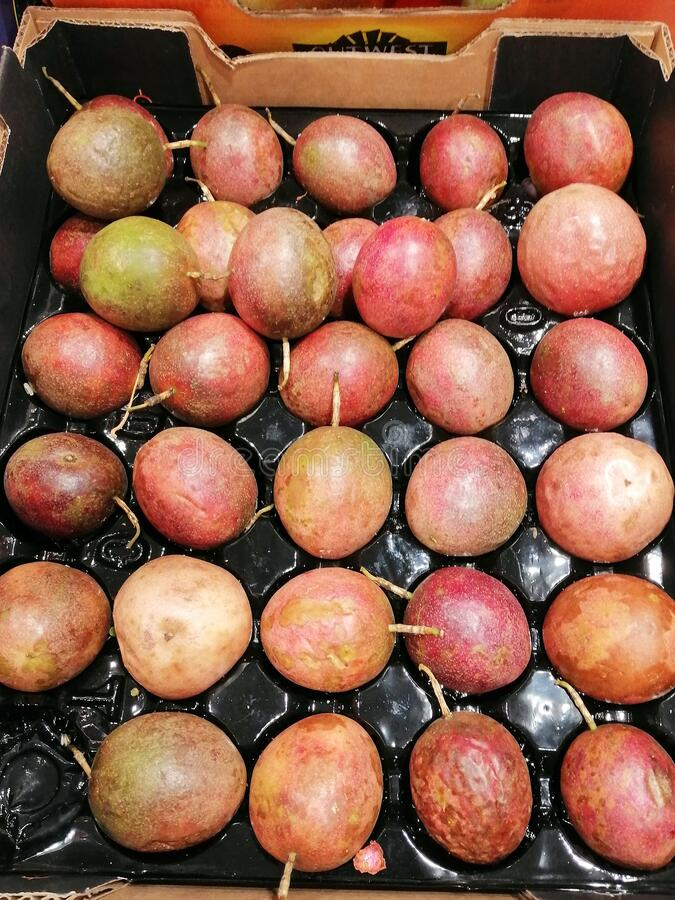 Colourful Light Skin Passionfruit in Shop. Many large light skinned passionfruit in a plastic tray, for sale in a fresh fruit and vegetable shop stock photo
