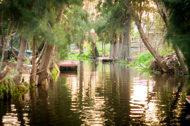 Colourful Mexico Xochimilco 39 S Floating Gardens In Mexico City Stock Photo Image Of Lake