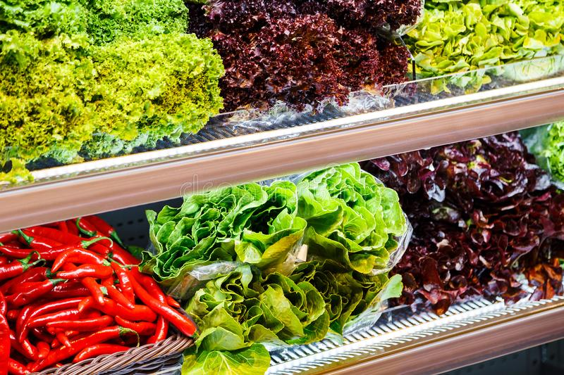 Colourful mix of different red, green, violet fresh vegetables and greens at the shelfs of supermarket royalty free stock photo