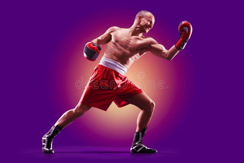 Colourful professional boxer isolated over purple background stock photography