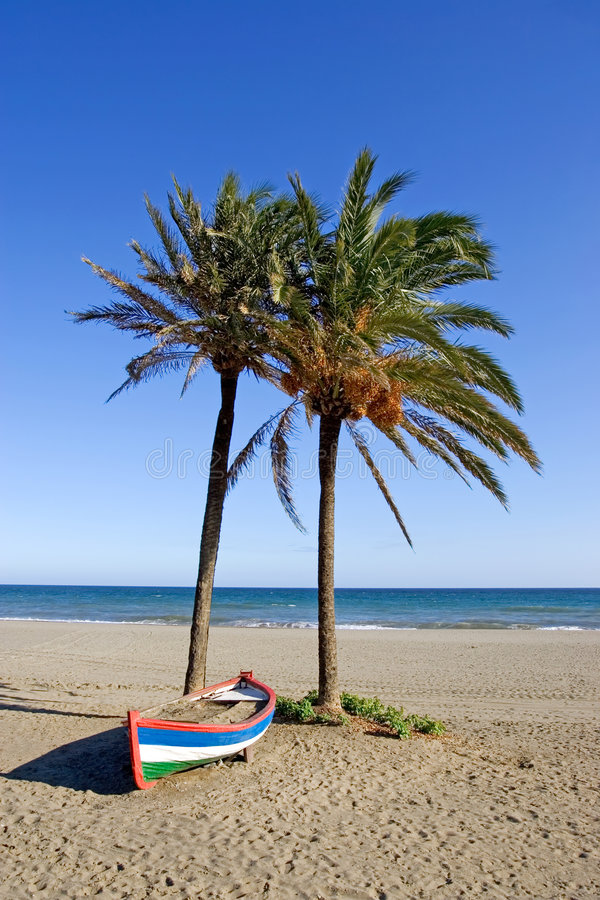Colourful rowing boat and palm trees on beach stock images