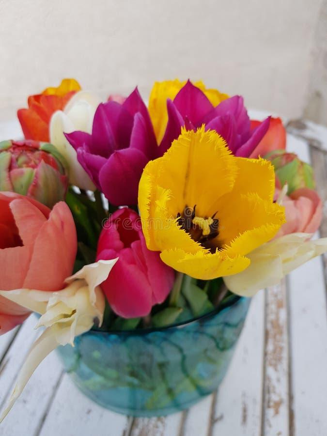 Colourful tulipany w wazie zdjęcia stock