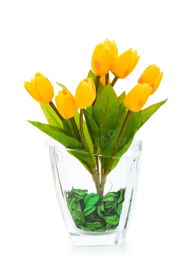 Download Colourful tulips isolated stock image. Image of flower - 11087209