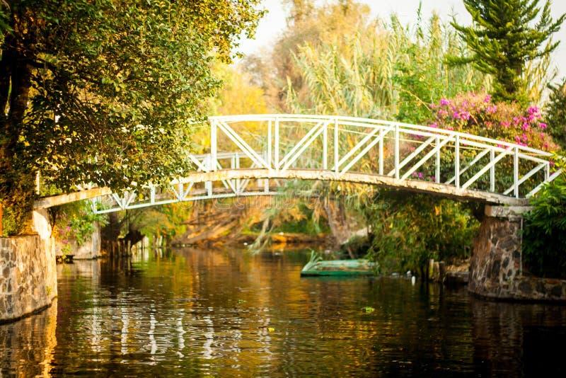 Colourful Xochimilco Meksyk Spławowi ogródy w Meksyk zdjęcia stock