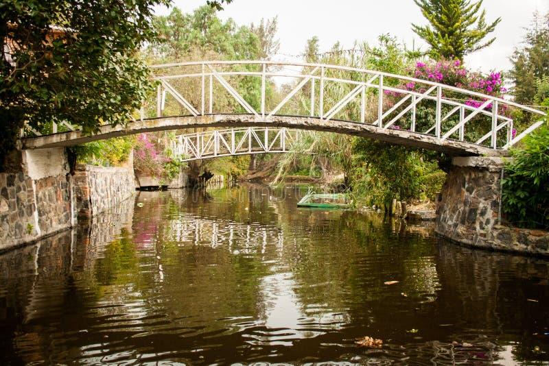 Colourful Xochimilco Meksyk Spławowi ogródy w Meksyk obraz stock