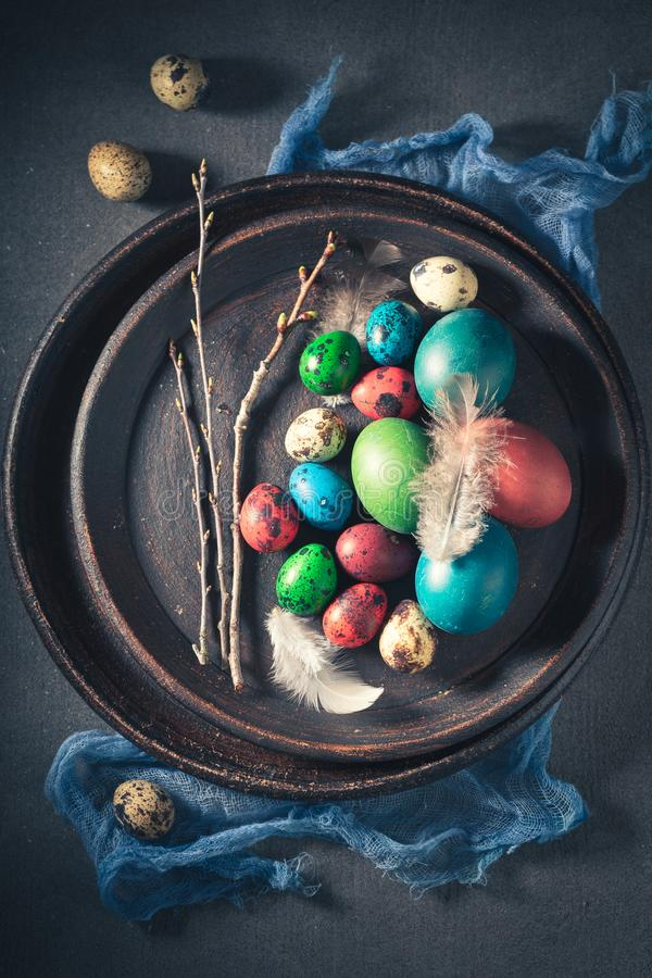 Colourfull eggs for Easter with white feathers royalty free stock photo