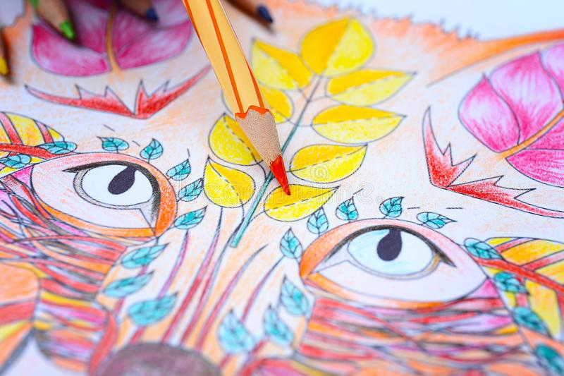 Colouring picture and pencils. Closeup royalty free illustration