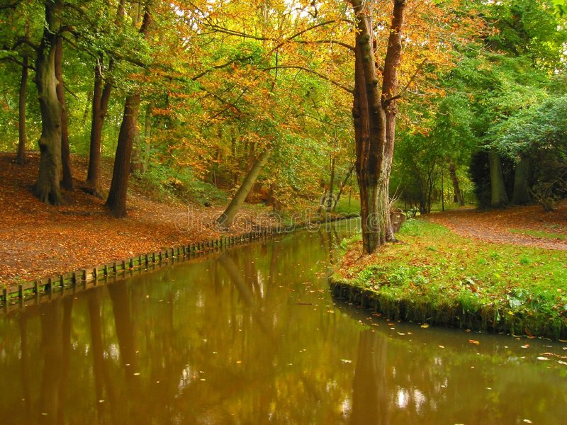 Download Colours of Autumn stock photo. Image of green, scenery, trees - 11402