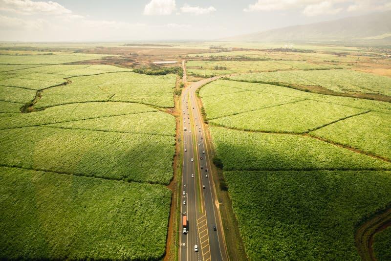 Colpo aereo di terreno coltivabile e della strada principale in Hawai fotografia stock